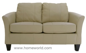 "The Gianna Loveseat is 55"" wide."