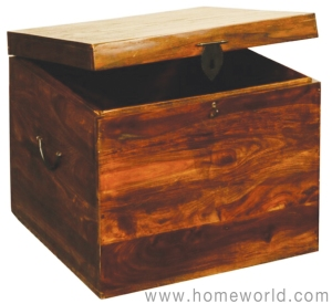 "Vienna Small Trunk is great for additional storage in any room. 18""x18""x18""."