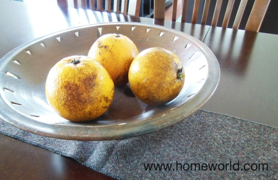 Lemons, limes, oranges, bananas, and managos make a great accent for the table.