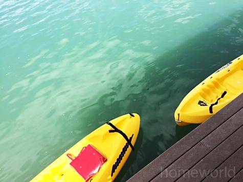 kayaks copy