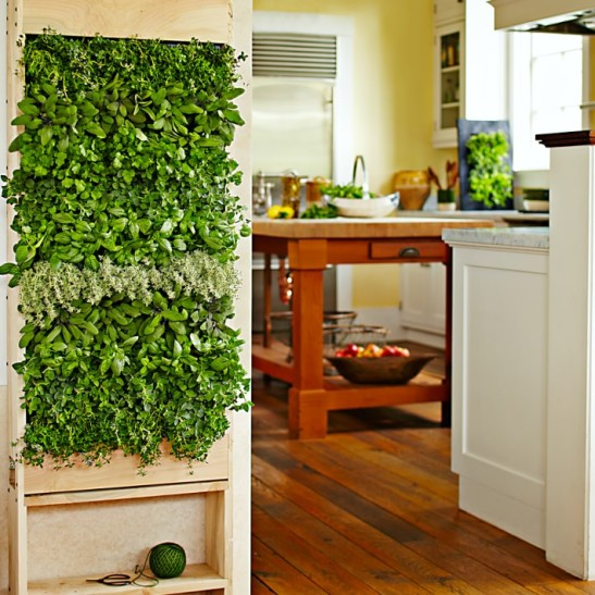 http://www.williams-sonoma.com/products/free-standing-vertical-wall-garden/