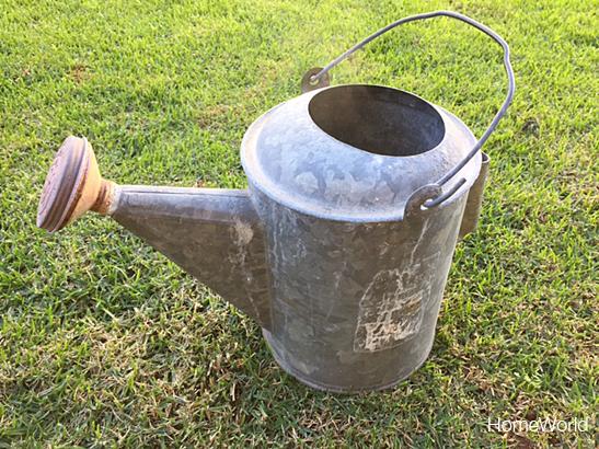 wateringcanfinal